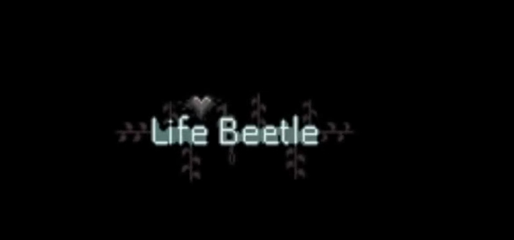 Life Beetle Free Download FULL Version Cracked PC Game