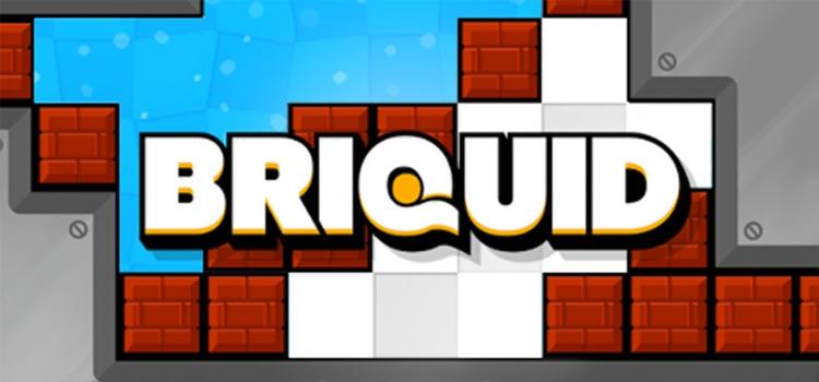 Briquid Free Download Full Version Crack PC Game Setup