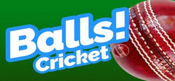Balls Virtual Reality Cricket Free Download Full PC Game