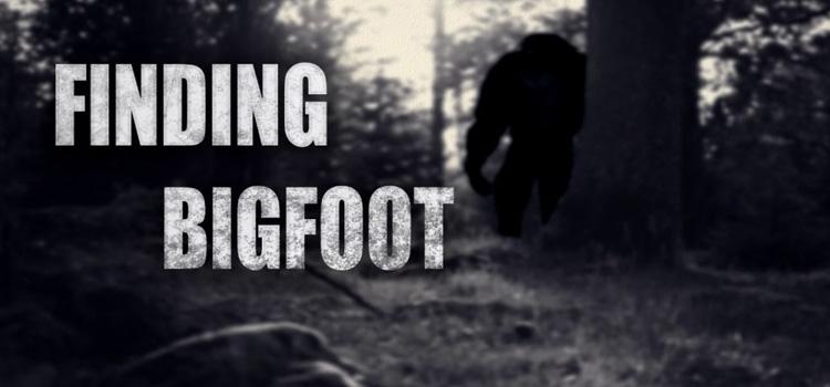 Finding Bigfoot Free Download FULL Version PC Game