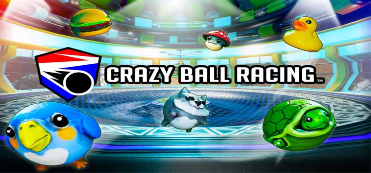 Crazy Ball Racing Free Download FULL Version PC Game
